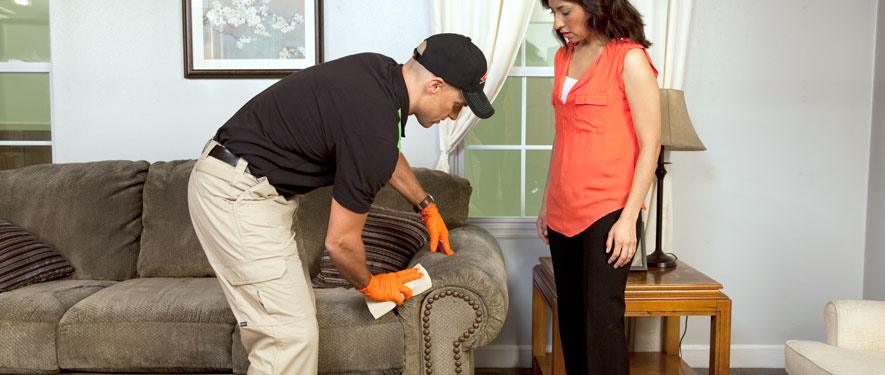 Chula Vista, CA carpet upholstery cleaning